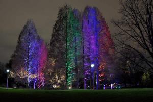 Ausstellung Winterlichter im Luisenpark Mannheim